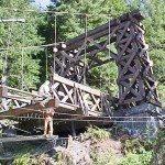 Longmire Suspension Bridge: Civil Engineering and Marine Construction Project